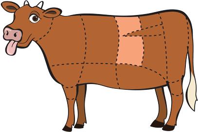 Beef Short Loin primal